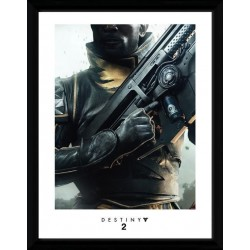 DESTINY 2 - Collector Print 30X40 - Warlock 161815  Collector Print Canvas