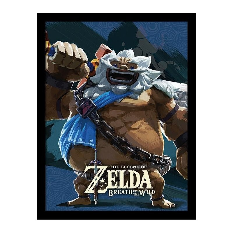ZELDA BREATH OF THE WILD - Collector Print HQ 32X42 - Vah Rudania 160968 Posters