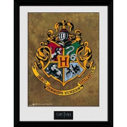 HARRY POTTER - Collector Print 30X40 - Hogwarts 170420  Collector Print Canvas