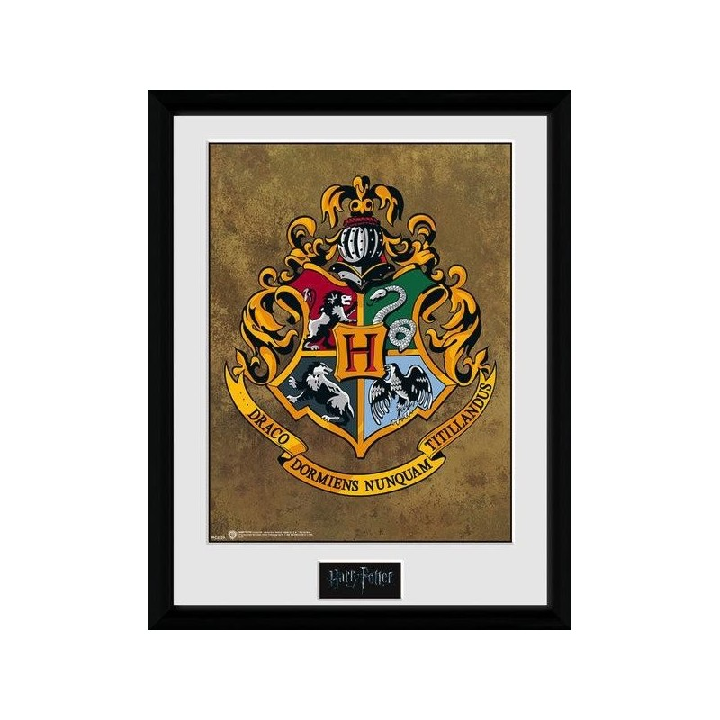 HARRY POTTER - Collector Print 30X40 - Hogwarts 170420  Posters
