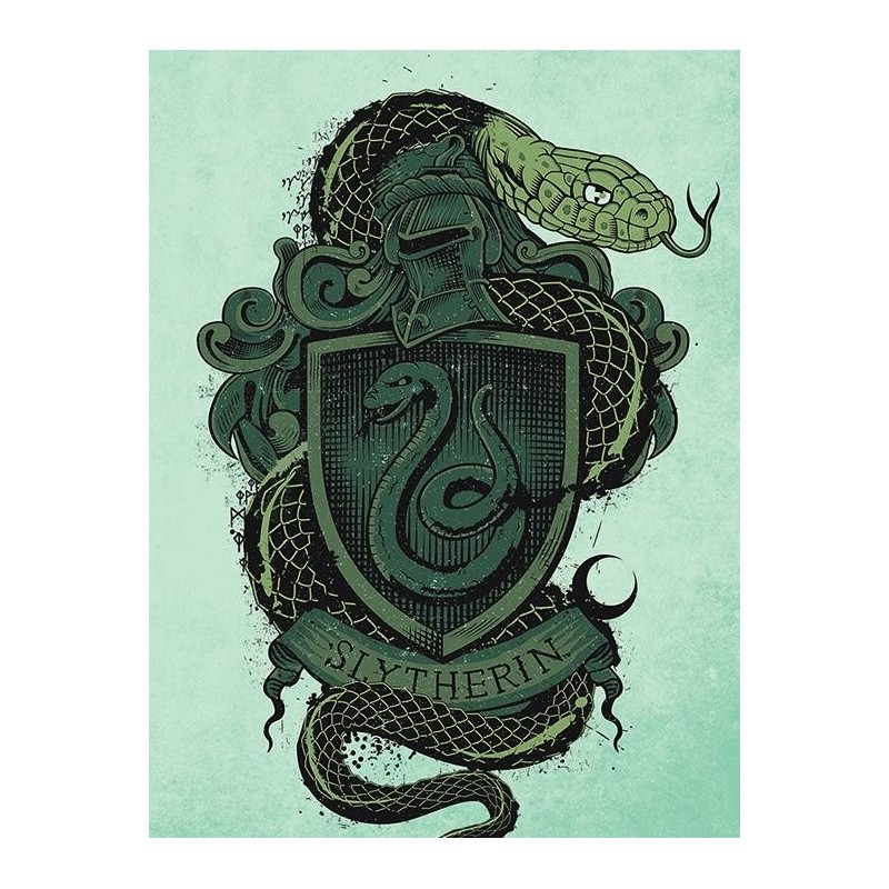 HARRY POTTER - Canvas 60X80 '38mm' - Slytherin 170341  Frames