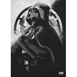 ROGUE ONE MORALITY - Magnetic Metal Poster 45x32 - Darth Vader 157505  Magnetische Posters