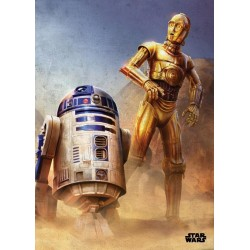 EPISODE IV A NEW HOPE- Magnetic Metal Poster 45x32 - Droids 157257  Magnetische Metalen Posters