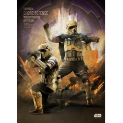 ROGUE ONE KEY FORCES - Magnetic Metal Poster 45x32 - Scarif Trooper 157178  Magnetische Metalen Posters