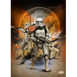 ROGUE ONE KEY FORCES - Magnetic Metal Poster 45x32 - Stormtroopers 157174  Magnetische Metalen Posters