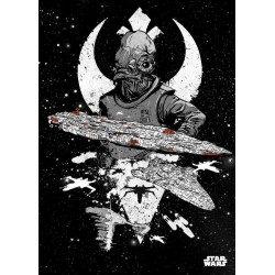 STAR WARS PILOTS - Magnetische Metalen Poster 45x32 - Rebel Fleet